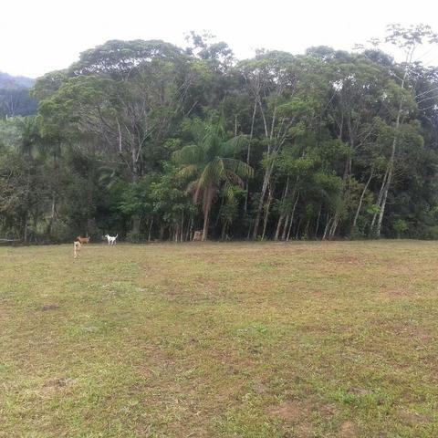 Linda área para Sítio, 10.000 m2 em ótima localização, pronto para construir - Foto 8