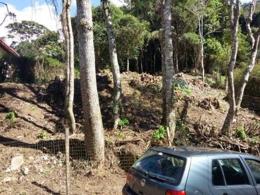 Terreno residencial à venda, Parque do Ingá, Teresópolis. - Foto 2