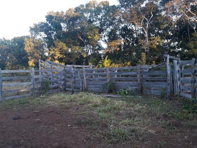 Chácara de terra boa a 9 km de Acorizal - Foto 16