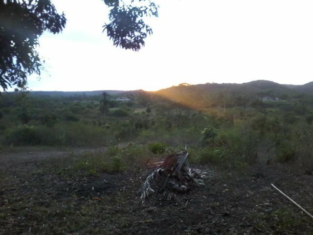Vendo fazenda em Araçás ba - Foto 5