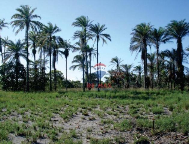 Área à venda, 2000000 m² - igrapiúna - igrapiúna/ba - Foto 3