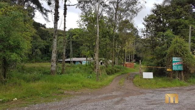 Terreno à venda em Bela vista, Caxias do sul cod:459 - Foto 15