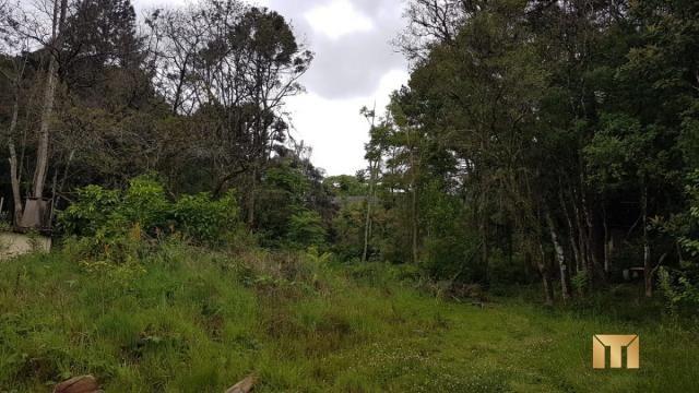 Terreno à venda em Bela vista, Caxias do sul cod:459