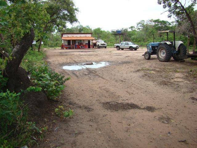 Fazenda com 1.006 hectares, com sede, aberta, para soja e milho - Foto 19