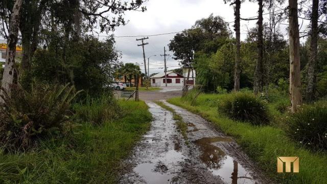 Terreno à venda em Bela vista, Caxias do sul cod:459 - Foto 7
