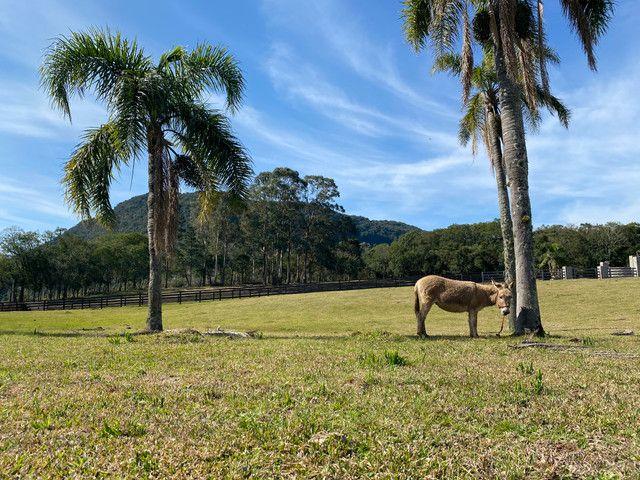 Condomínio rural na serra gaúcha - Foto 14