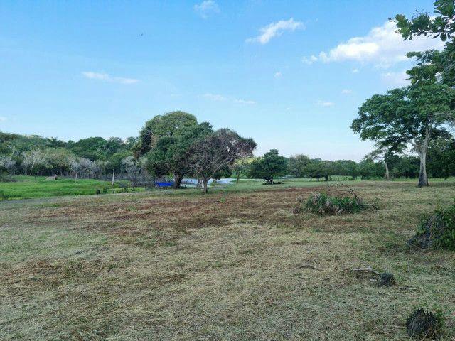 Terreno em itacoatiara, ramal da Penha com 46.5 hectares - Foto 8