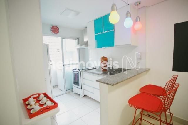 Apartamento à venda com 2 dormitórios em Nova suíssa, Belo horizonte cod:178144 - Foto 3