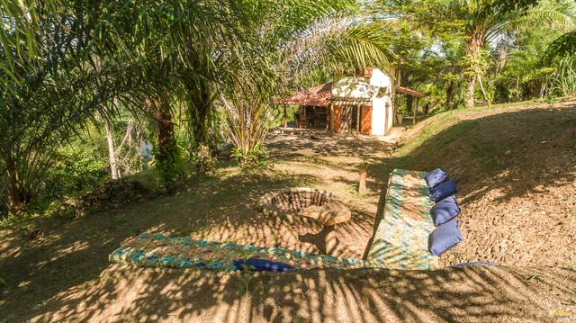 Sítio no rio de contas, Itacaré - Foto 5