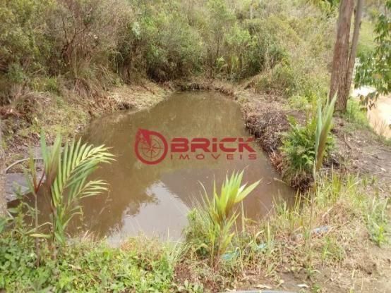 Sítio em teresópolis com cachoeira, nascente, terra para plantação e árvores frutíferas. - Foto 13