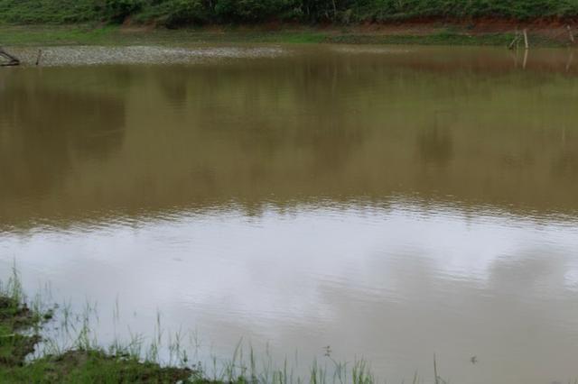 """Fazenda Montada 25 Alqueires Cocalzinho""""Toda Formada,72 km de Anapolis,129 km Goiania - Foto 2"""