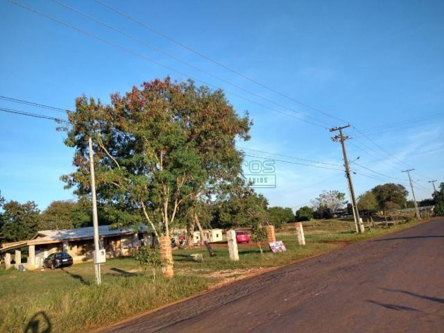 Chácara à venda em Loteamento cataratas, Foz do iguacu cod:6605 - Foto 3
