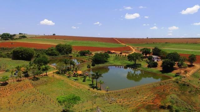 Vendo fazenda em alfenas - Foto 6
