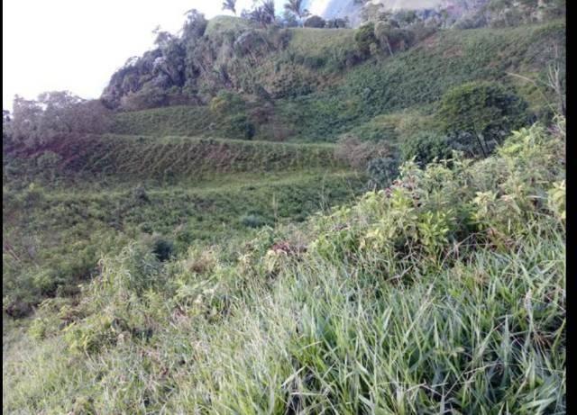 Vendo terreno de 4 alqueires em Ribeirão, Vargem Alta - Foto 10