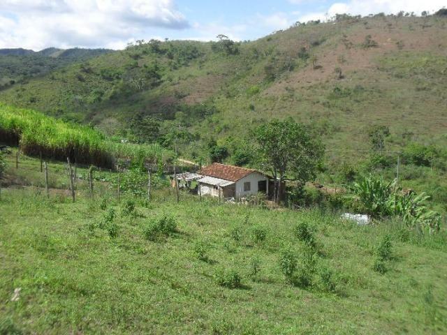 Terreno à venda em São pedro, Areal cod:LIV-7318 - Foto 14