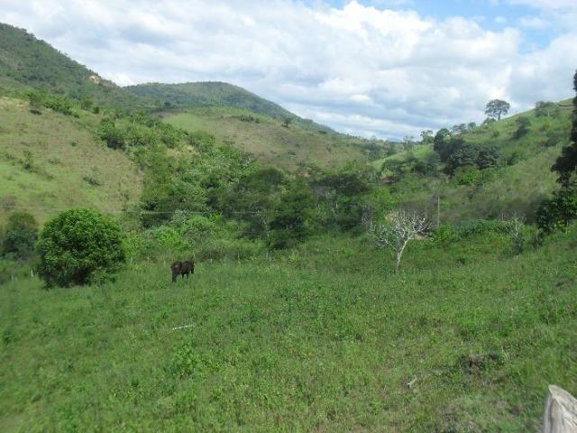 Terreno à venda em São pedro, Areal cod:LIV-7318 - Foto 11