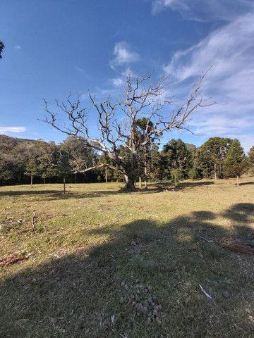 Condomínio rural na serra gaúcha - Foto 6