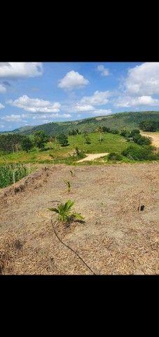 Terreno em Amaraji, 1.340m² oportunidade - Foto 3