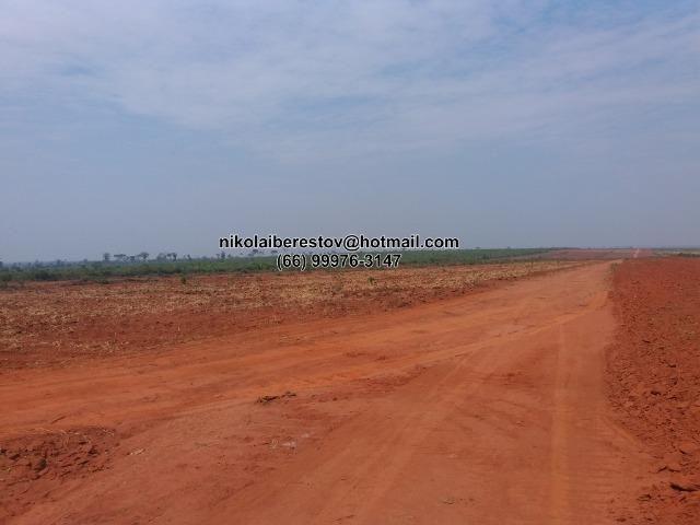 Fazenda 5.000 hectares nordeste mt nikolaiimoveis