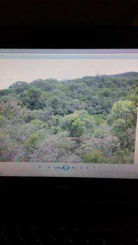 Gs cod 161 Área no Vale das Videiras!! - Foto 6