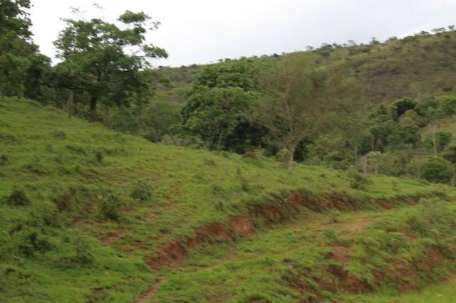 """Fazenda Montada 25 Alqueires Cocalzinho""""Toda Formada,72 km de Anapolis,129 km Goiania - Foto 7"""