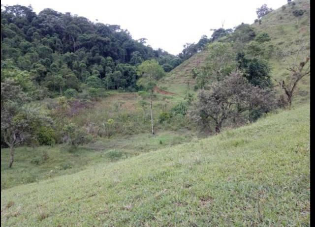 Vendo terreno de 4 alqueires em Ribeirão, Vargem Alta - Foto 5