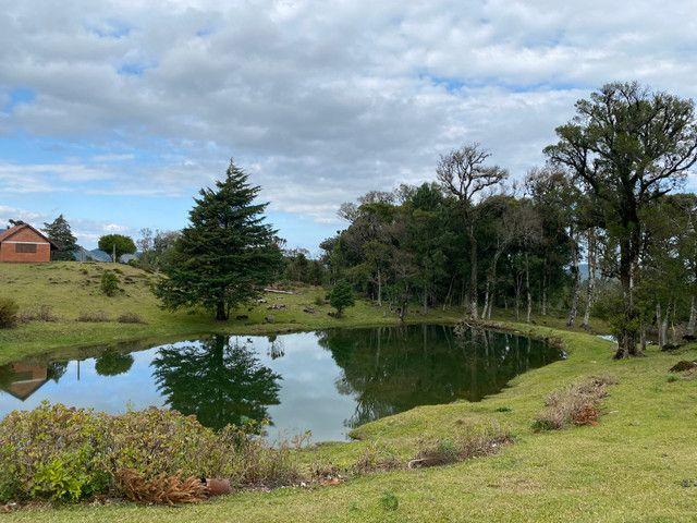 Condomínio rural na serra gaúcha - Foto 17