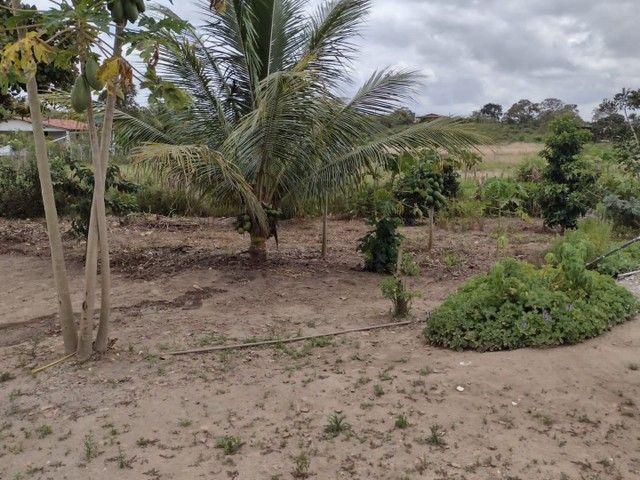 Vendesse terreno com casa no sitio - Foto 5