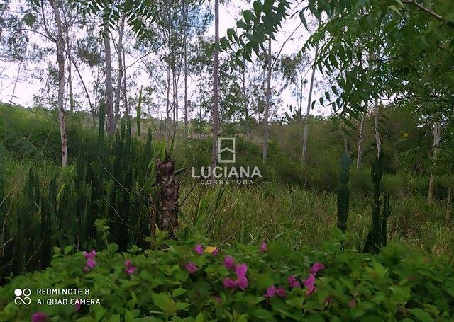 Propriedade com 35 hectares em Glória do Goitá - Foto 10