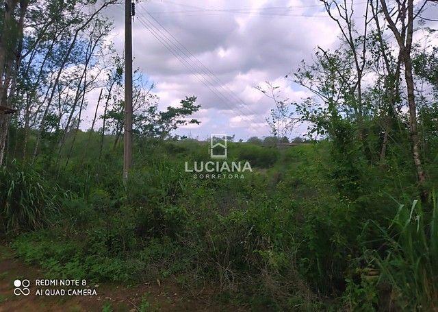Propriedade com 35 hectares em Glória do Goitá - Foto 12