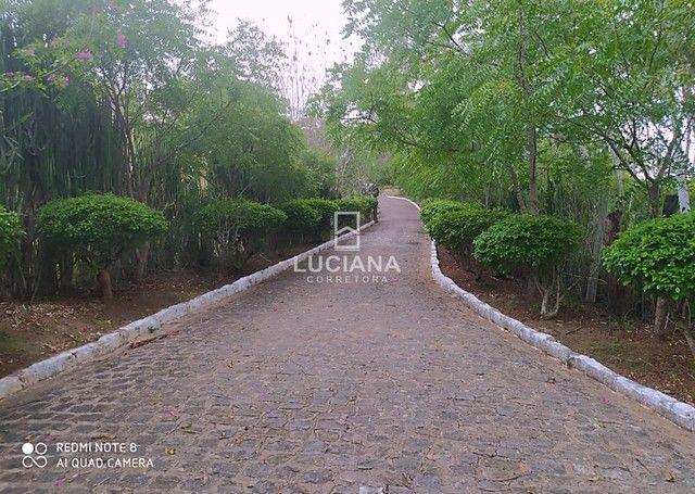 Propriedade com 35 hectares em Glória do Goitá - Foto 7