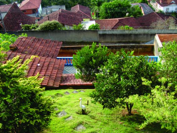 Terreno residencial à venda, Fazendinha, Teresópolis. - Foto 2