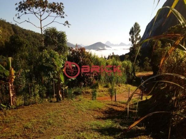 Sítio em teresópolis com cachoeira, nascente, terra para plantação e árvores frutíferas. - Foto 17