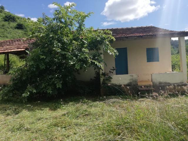 Fazenda com 127 hectares em Baixo Guandu - Foto 6