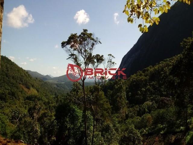 Sítio em teresópolis com cachoeira, nascente, terra para plantação e árvores frutíferas. - Foto 18