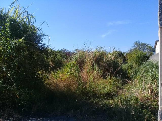 "MLCód: 22Ótimo Terreno no Bairro Itatiquara em Araruama/RJ)*;"" - Foto 6"