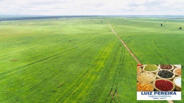 FAZENDA A VENDA P/ AGRICULTURA, PROJETO IRRIGAÇÃO EM LAGOA DA CONFUSÃO -TO - Foto 2