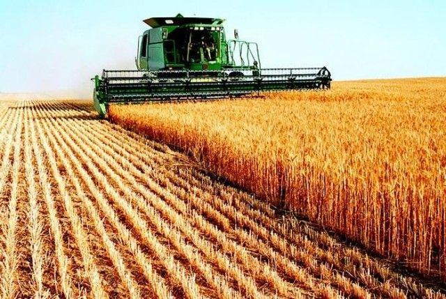 ; Fazendas\Lotes\Terras\Maquinas\Sitios - Foto 3