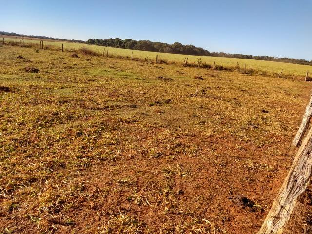 Fazenda Agrícola. 105 Alq. em Montividiu-GO - Foto 6