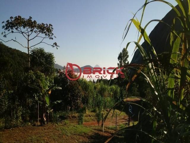 Sítio em teresópolis com cachoeira, nascente, terra para plantação e árvores frutíferas. - Foto 15