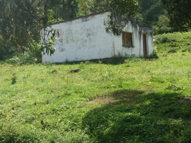 Fazenda Ibicaraí - Foto 19