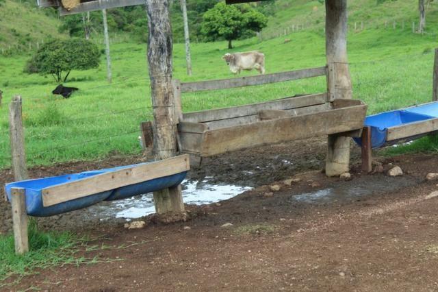 """Fazenda Montada 25 Alqueires Cocalzinho""""Toda Formada,72 km de Anapolis,129 km Goiania - Foto 17"""