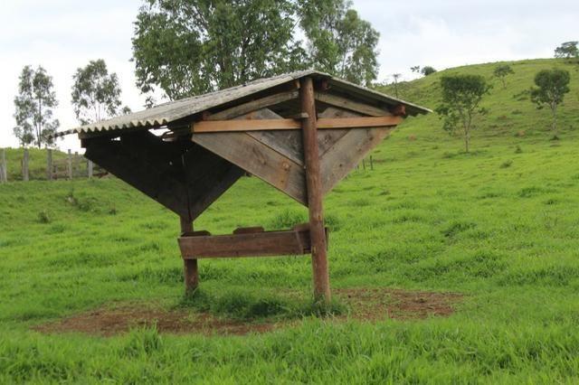 """Fazenda Montada 25 Alqueires Cocalzinho""""Toda Formada,72 km de Anapolis,129 km Goiania - Foto 10"""