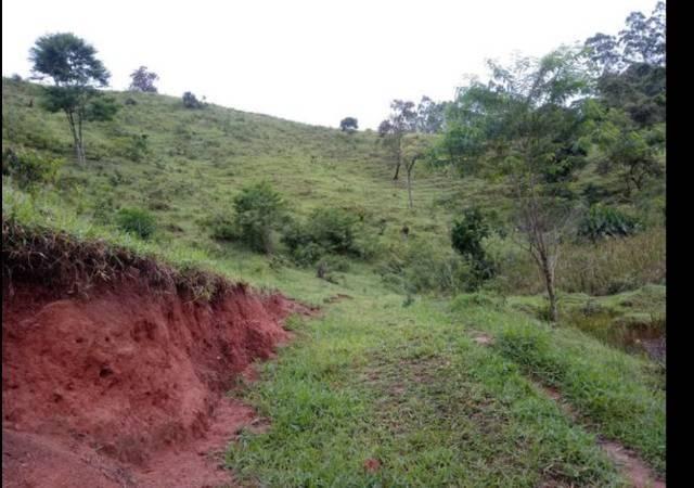 Vendo terreno de 4 alqueires em Ribeirão, Vargem Alta - Foto 2