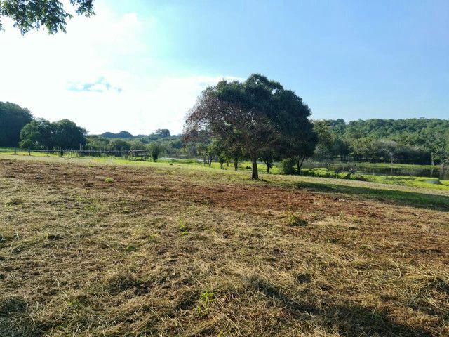 Terreno em itacoatiara, ramal da Penha com 46.5 hectares - Foto 9