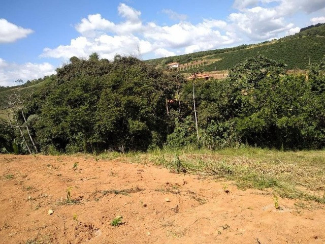 Vende-se chácaras de 1000m² em Muzambinho - Foto 6