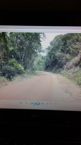 Gs cod 161 Área no Vale das Videiras!! - Foto 2