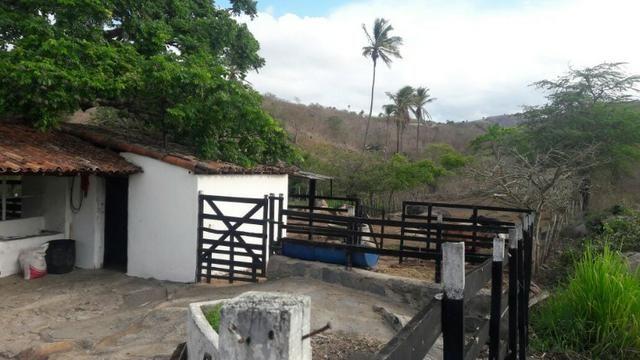 Chácara em Gravatá-PE 950 Mil Ref.422 - Foto 9