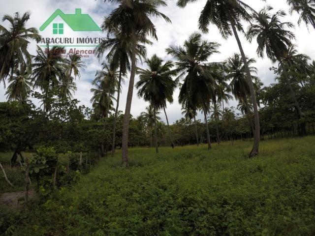 Agradável casa com amplo terreno próximo à praia do kite de Paracuru - Foto 14
