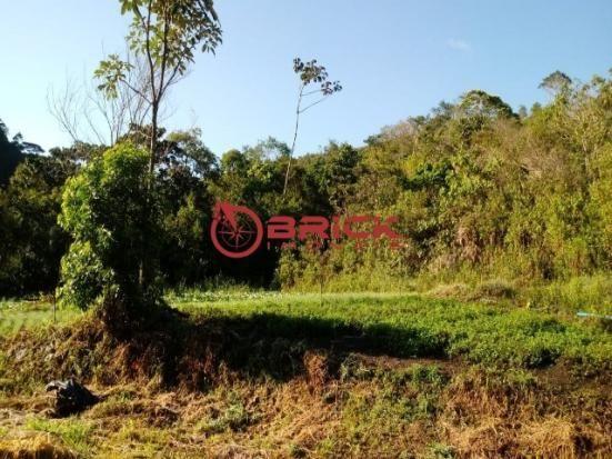 Sítio em teresópolis com cachoeira, nascente, terra para plantação e árvores frutíferas. - Foto 16